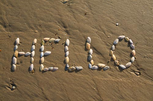 'Hello' spelt in shells on a beach