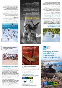 940-110-14-15 Caribbean leaflet low res_Page_1