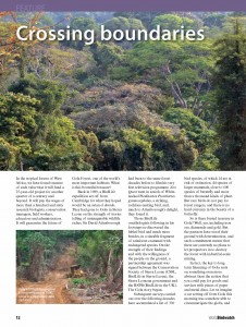 gola forest_Page_1
