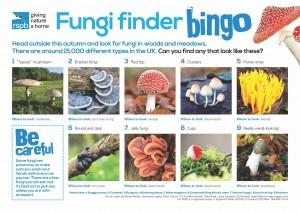 fungi-finder-bingo_tcm9-407382