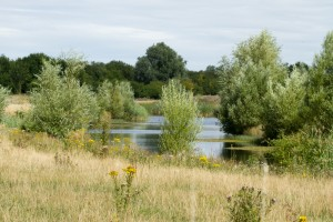 Lagoon at Ouse Fen, Cambridgeshire